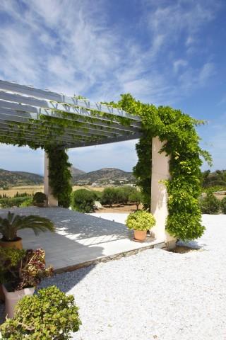 gallery casa del sol the garden
